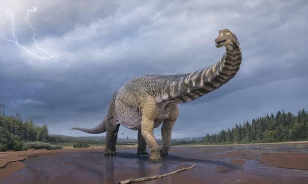 Фото №1 - В Австралии вычислили вес самого большого динозавра