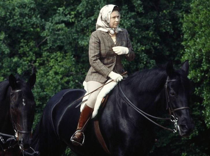 Фото №1 - Всегда на коне: 93-летняя Королева продолжает кататься верхом