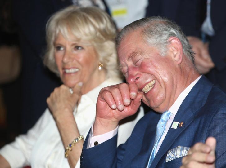 Фото №11 - Каким королем будет принц Чарльз (и почему он не уступит Уильяму)
