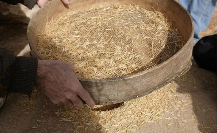 Фото №1 - Археологи попробовали на вкус хлеб из каменного века