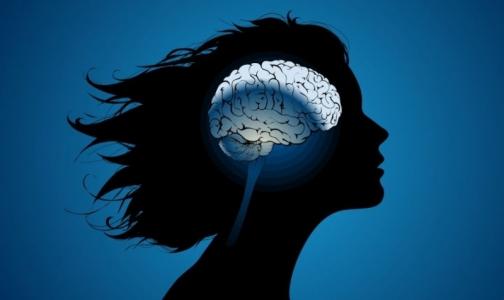 Фото №1 - Ученые выяснили, есть ли различия между мужским и женским мозгом