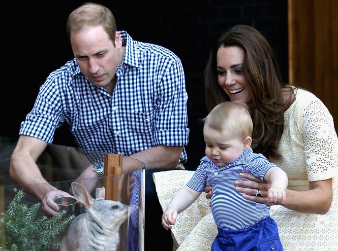 Фото №1 - Принц Уильям и Кейт Миддлтон нашли домработницу