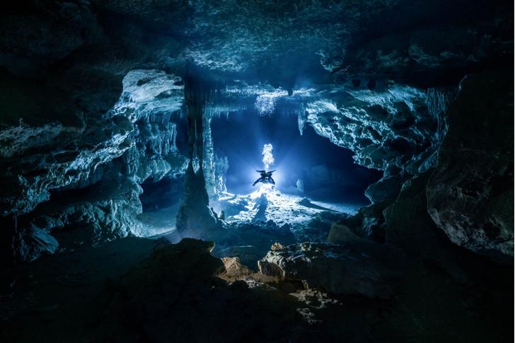 Фото №1 - Подводное исследование
