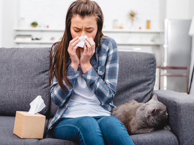 Фото №3 - Отдать нельзя оставить: что делать, если у вас аллергия на домашнее животное