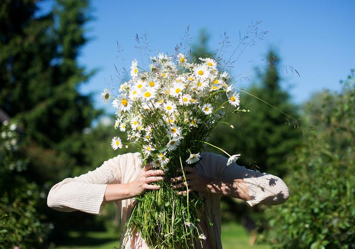 Фото №5 - Во славу Солнца: как отмечают день летнего солнцестояния в Латвии