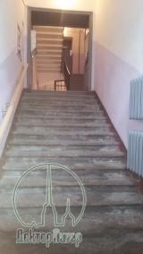 В Петербурге размножаются «подпольные хосписы»