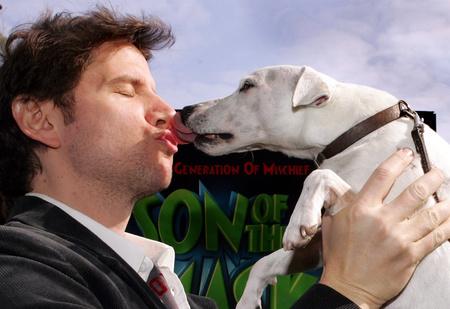 Вредно ли целовать собаку?