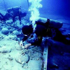 Фото №1 - Затонувшее судно нашли благодаря осьминогу