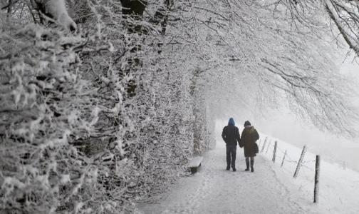 Фото №1 - Петербургские врачи рассказали, как правильно гулять в морозную погоду