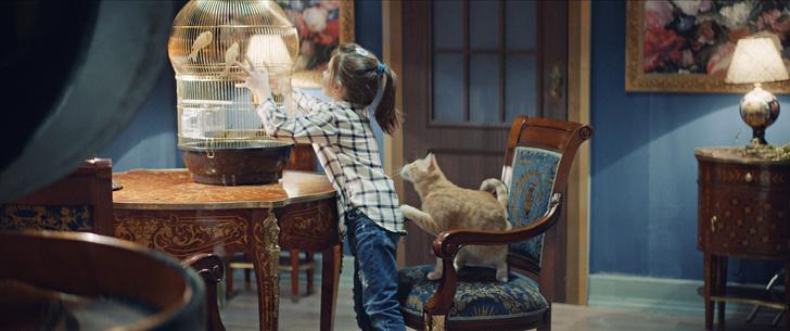 Фото №5 - Мясо в качестве зарплаты, дублеры и тишина на площадке: как работают коты-актеры