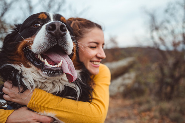 Фото №2 - Мать требует сменить кличку собаки, чтобы назвать так дочь
