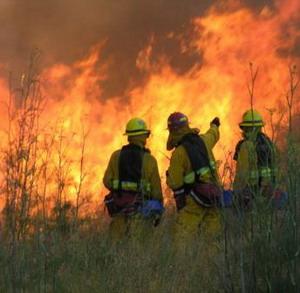 Фото №1 - США борется с огнем