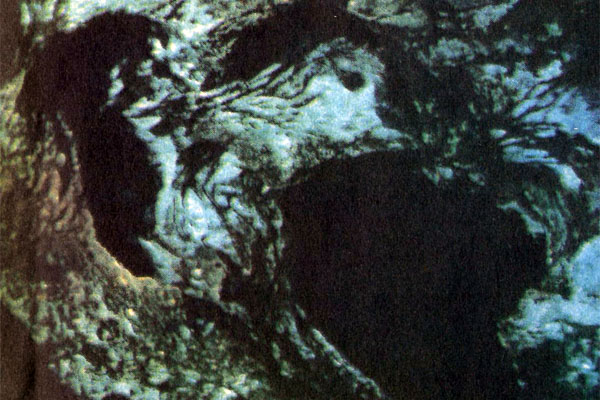 Фото №1 - Ищем «пришельцев»
