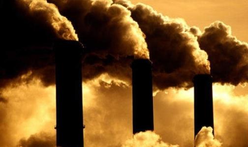 Фото №1 - В Красном Бору присмотрели место для завода по сжиганию медотходов
