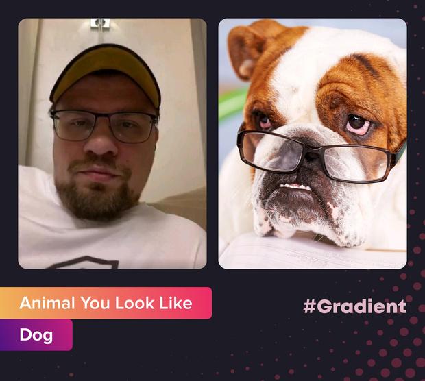 Фото №5 - На какое животное ты похож: новое развлечение от приложения Gradient