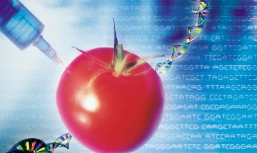Фото №1 - В детском питании ГМО быть не должно