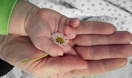 Фото №1 - Росздравнадзор запретил иностранной компании продавать сперму в российские клиники