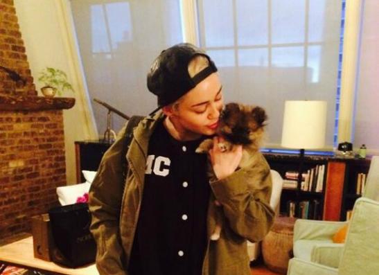 Фото №1 - Майли Сайрус отказалась от подаренного щенка