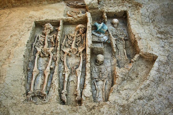 Фото №1 - В Фанагории обнаружено захоронение богатого воина