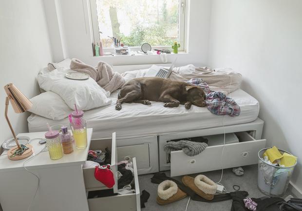 Фото №3 - Вещи в доме, которые нужно прятать от чужих глаз