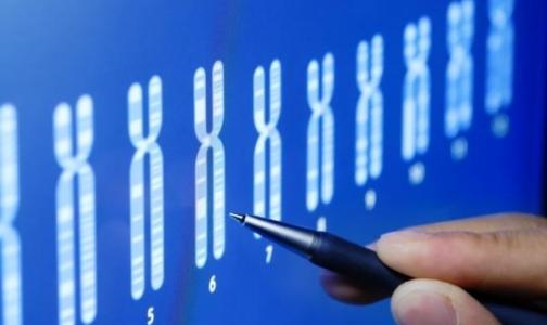 Фото №1 - За рак яичников ответственны хромосомы
