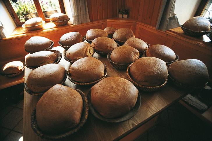 Фото №1 - Ученые выяснили, какой хлеб полезнее