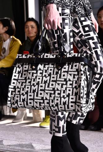 Фото №49 - Самые модные сумки осени и зимы 2019/20