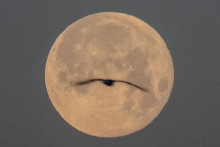 Фото №1 - Подтверждено существование воды на Луне