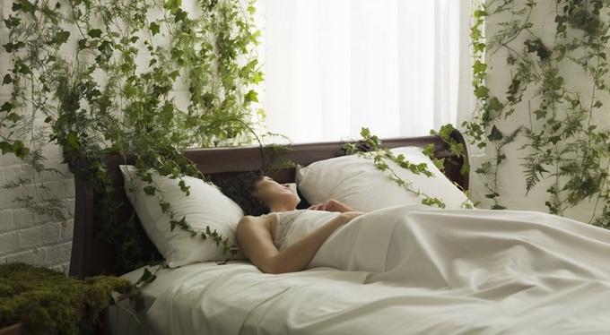 Как правильно питаться, чтобы… высыпаться