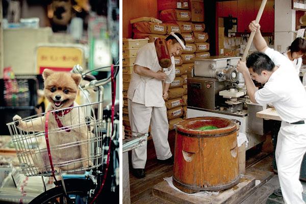 Фото №2 - Кобе, Япония. Начало большого путешествия