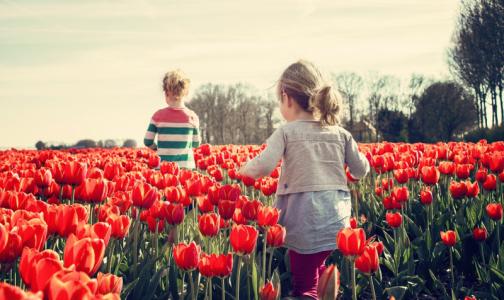 Фото №1 - Академик объяснила родителям, когда нужно вести ребенка к психологу