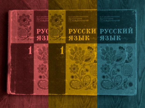 Фото №1 - Тест на знание русского языка