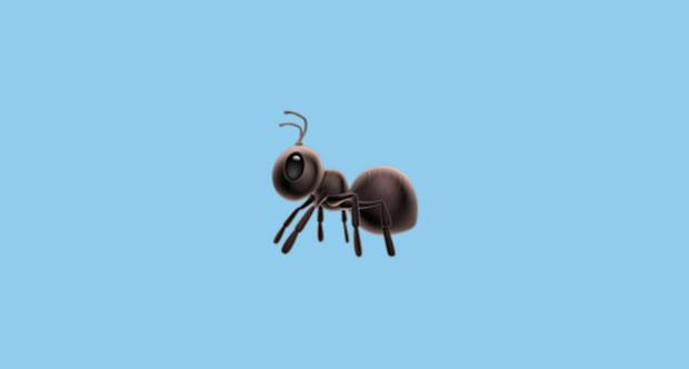 Фото №1 - Энтомолог рейтингует эмодзи муравья от разных производителей (галерея)