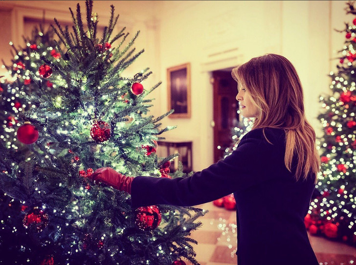 Фото №1 - Кошмар перед Рождеством: Мелания Трамп повторила прошлогодний «успех» в соцсетях