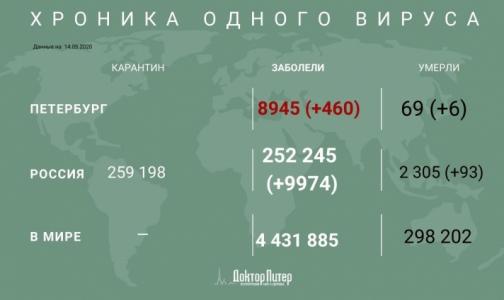 Фото №1 - За сутки в Петербурге выявили 460 заразившихся коронавирусом