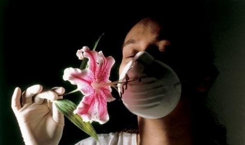 Фото №1 - Создано новое отечественное лекарство от аллергии