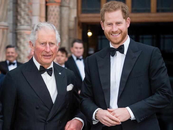 Фото №1 - Финал истории: почему принц Чарльз лишил Сассекских финансирования на самом деле