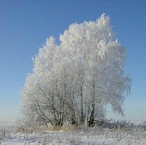 Фото №1 - В выходные резко похолодает