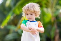 Ребенка покусали комары и мошки: как снять зуд, отек и боль