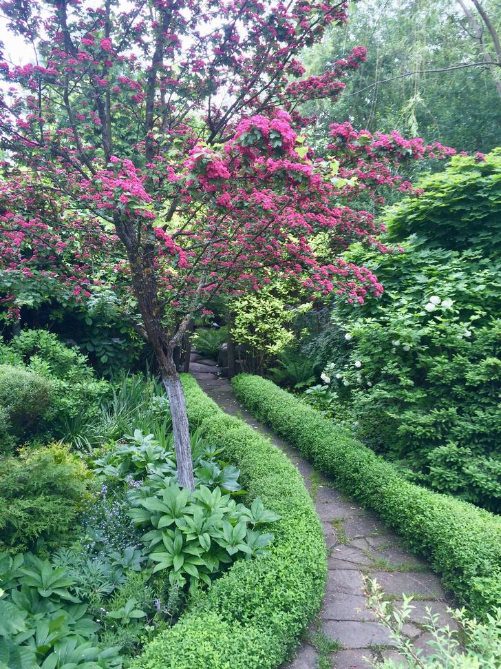 Фото №17 - ELLE DECORATION в саду у дизайнера Ирины Глик