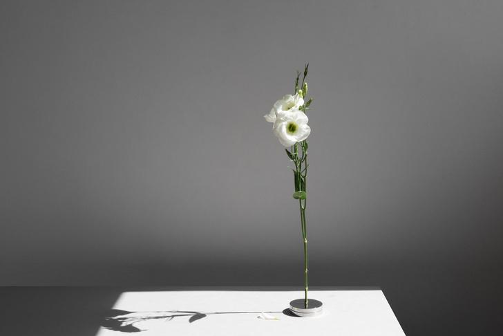 Фото №3 - No Vases: вазы без ваз