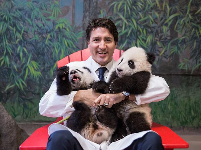 Фото №10 - Почему мир влюблен в канадского премьера Джастина Трюдо