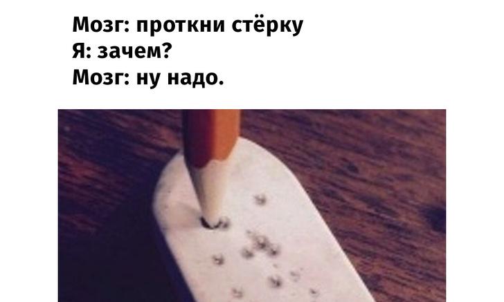Фото №1 - Избранные мемы «Мозг: сделай это!»