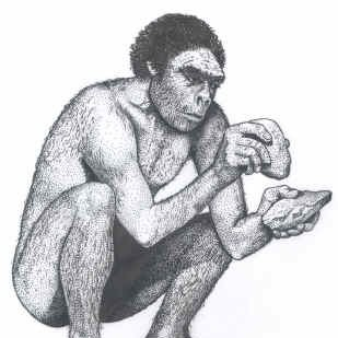 Фото №1 - Эволюция человека была нелинейной