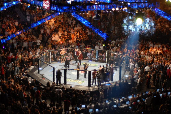 Фото №1 - 10 убойных фактов про MMA