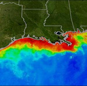 Фото №1 - В Мексиканском заливе растет мертвая зона