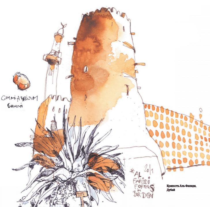 Фото №1 - Дети пустыни: как производятся акварельные краски