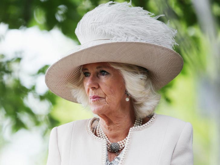 Фото №1 - Просто герцогиня: почему Камилла не использует титул принцессы на самом деле