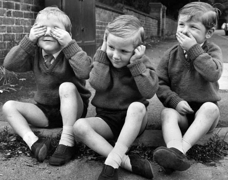 Фото №1 - Как зрение управляет слухом