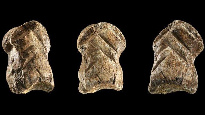 Фото №1 - В Германии нашли статуэтку, вырезанную более 50 тысяч лет назад
